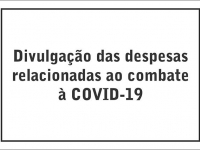Despesas Covid-19